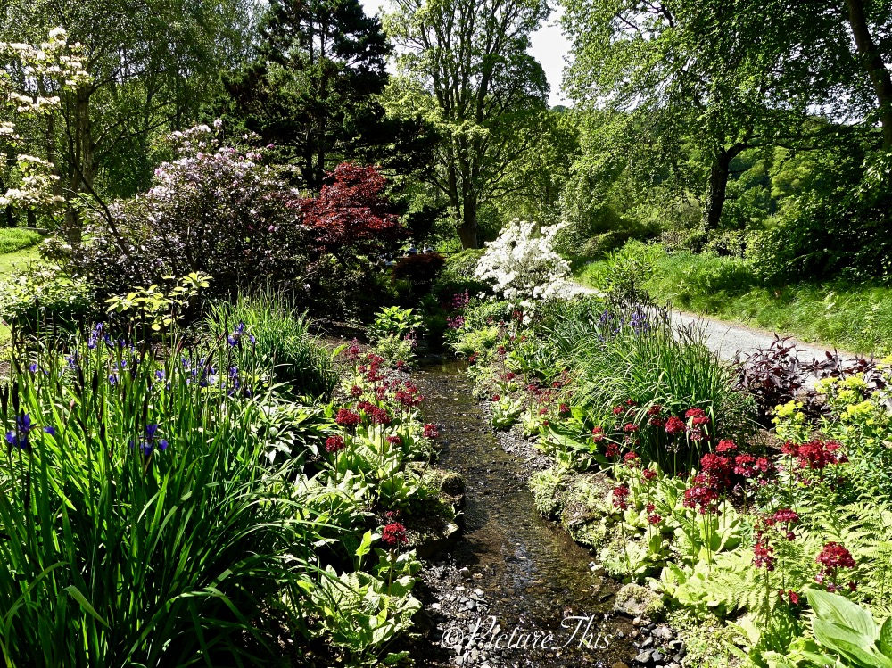 Pathway with stream, trees and flowers