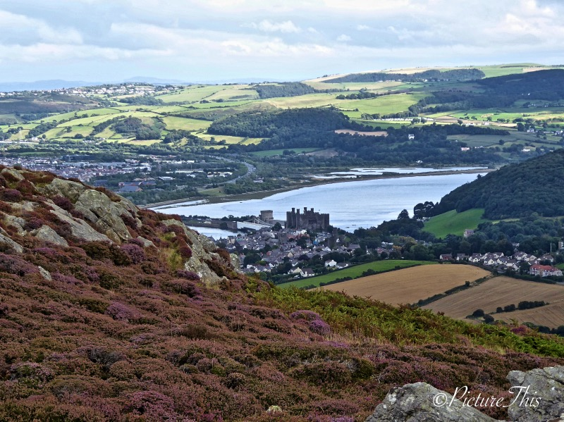 Looking down on Conwy town and estuary