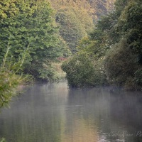 #SilentSunday ~ A misty morning on the river #Nature #Photography #River