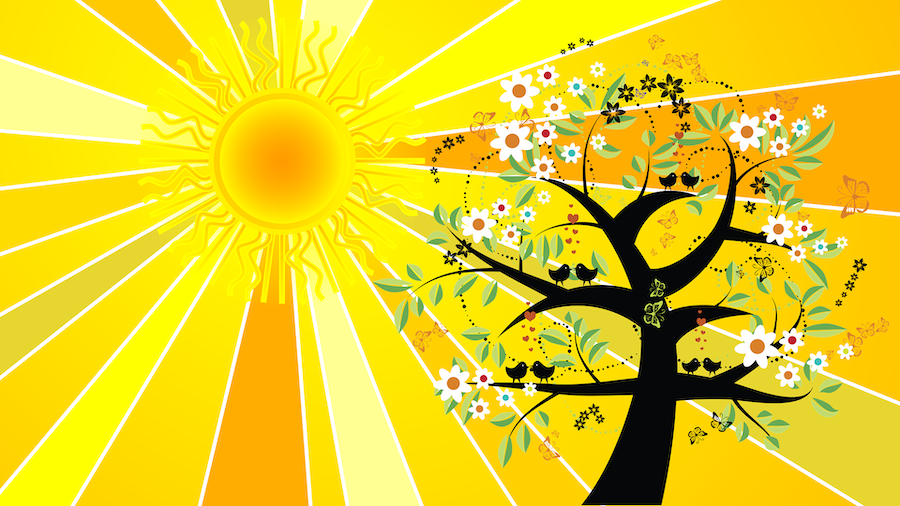 summer-solstice-2433807_1920 copy